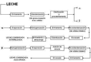 Proceso de pasteurización de la leche   Procesos de producción   Scoop.it