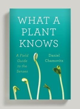 What A Plant Knows | CxBooks | Scoop.it