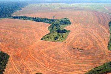 Deforestation rises again in Brazil's Amazon | Biodiversity IS Life -- Conservation,Ecosystems,Wildlife,Rivers,Water,Forests | Scoop.it