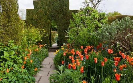 How to plant a beautiful border   Horticulture, parks and gardens   Scoop.it