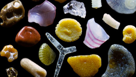 What's in a grain of sand? A whole lot more than you think | Integrating Art and Science | Scoop.it
