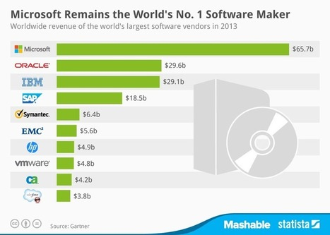 The 10 Most Profitable #Software Companies in the World | Health care industry | Scoop.it