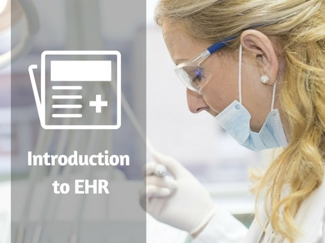 Introduction to Electronic Health Records (EHRs) | EHR and Health IT Consulting | Scoop.it
