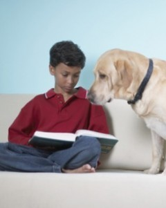Can dogs teach kids to read? - The Week | Food for Pets | Scoop.it
