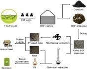 Bioconversion of organic wastes into biodiesel and animal feed via insect farming | Entomophagy, insects for feed and pharma | Scoop.it