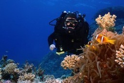 Rebreathers changing scuba diving FOREVER – New SSI/Poseidon program introduced | All about water, the oceans, environmental issues | Scoop.it
