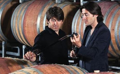 Les frères Lavau changent la donne   Viticulture et vins   Scoop.it