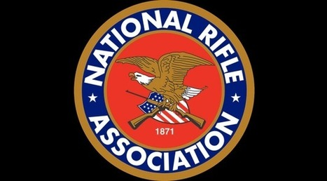 National Rifle Association blames video games (among others) for Newtown tragedy | Debate | Scoop.it