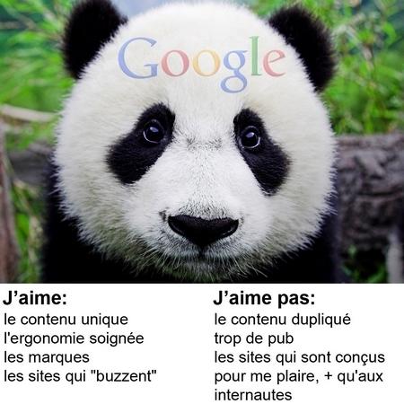 Impact de Google Panda sur les sites e-tourisme en France | Chambres d'hôtes et Hôtels indépendants | Scoop.it