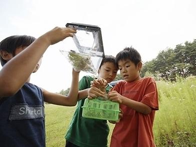 Into the Wilderness: Expanding the Lives of Kids | Kindergarten | Scoop.it