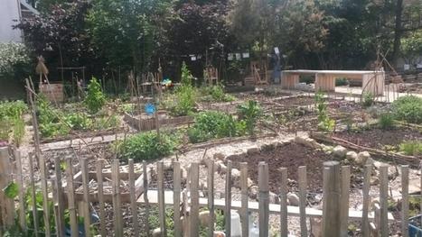 [Ecouter] Pierre Rabhi en son jardin - La Marche des sciences - France Culture | Chimie verte et agroécologie | Scoop.it