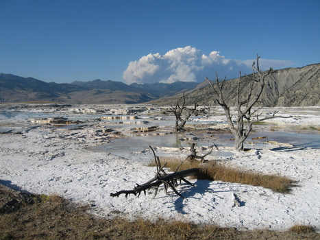 """Yellowstone National Park