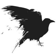 Animal Intelligence: Crows Understand Analogies | Music, Videos, Colours, Natural Health | Scoop.it