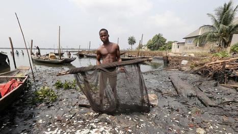 Los diez conflictos ambientales más importantes del planeta | Periodismo Ecológico Ambiental | Scoop.it