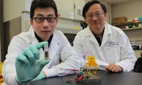 Biodegradable Sugar Powered Batteries Soon Available? | Communication design | Scoop.it
