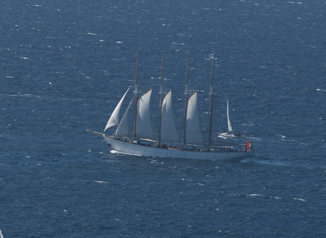 Tall Ships Regatta à Toulon. J'y étais ! | Bateaux et Histoire | Scoop.it