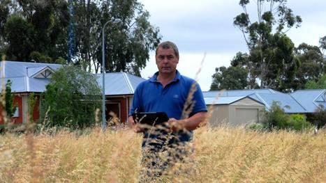 Landholders, consider fire danger - Border Chronicle | Fire prevention with grasses | Scoop.it