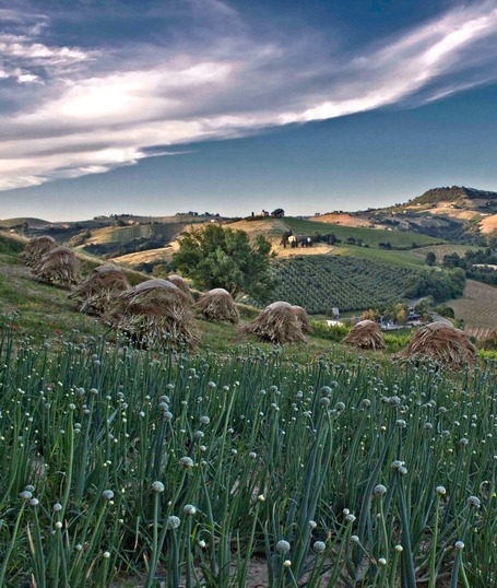 Travel to The Marche Region of Italy | Le Marche Properties and Accommodation | Scoop.it