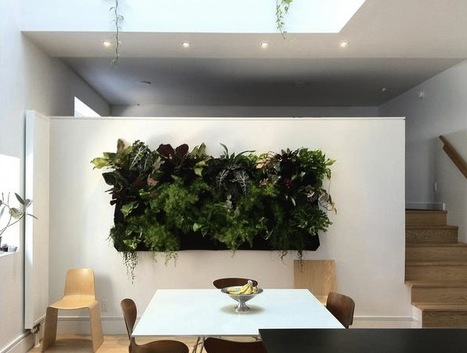 On Watering Living Walls in the Home | Sustainable Futures | Scoop.it