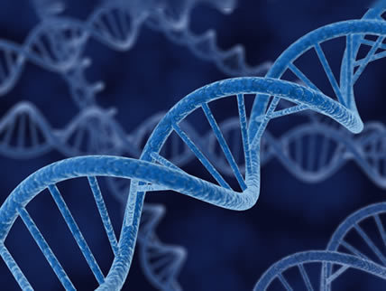 Researchers show how mindfulness and thoughts change your genes | Cultural Trendz | Scoop.it