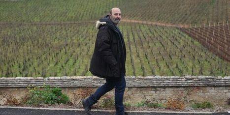 Cédric Klapisch : « La vigne en Bourgogne est le caviar de l'agriculture » | Le vin quotidien | Scoop.it
