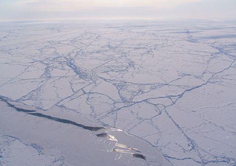 Météo : l'Arctique est anormalement chaud ! | Un peu de tout et de rien ... | Scoop.it