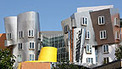 MIT launches 'automated course'   Innovations in e-Learning   Scoop.it