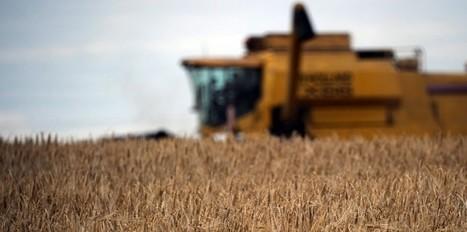 Kokopelli - La guerre des graines a commencé | Shabba's news | Scoop.it
