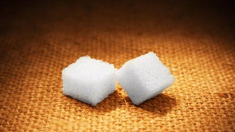 10 Crazy Ways To Sweeten Without Sugar « Bodynomics | name | Scoop.it