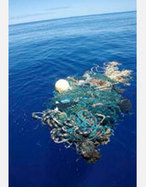 """nsf.gov - National Science Foundation (NSF) News - Scientists Find """"Great Pacific Ocean Garbage Patch"""" - US National Science Foundation (NSF) 