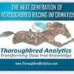 Thoroughbred Analytics   Thoroughbred Analytics   Scoop.it