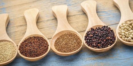6 of the Healthiest Gluten-Free Grains | zestful living | Scoop.it