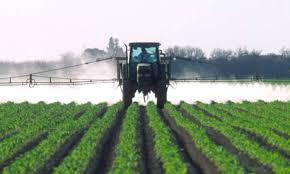 Investigative Report: Soaring Pesticide Use and Poisoning Linked to GE Crop Production | Healthy Recipes and Tips for Healthy Living | Scoop.it