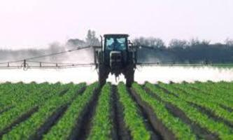 Investigative Report: Soaring Pesticide Use and...