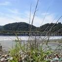 El río Alfeo | Absolut Grecia | Mitología | Scoop.it