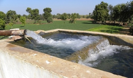When Wells Fail: Farmers' Response to Groundwater Depletion in India - Agriculture and Ecosystems Blog | Friday Links | Scoop.it