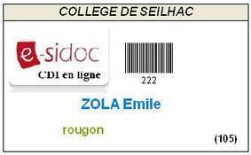 Professeurs documentalistes de l'académie de Limoges | BCDI & esidoc | Scoop.it