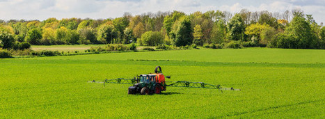 Glyphosate : Malte et l'Italie reviennent sur son autorisation | Planete DDurable | Scoop.it