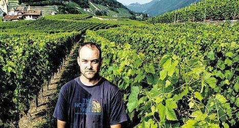 Les vignerons réclament des réparations à Bayer | Meilleure revue de presse de l'univers connu | Scoop.it