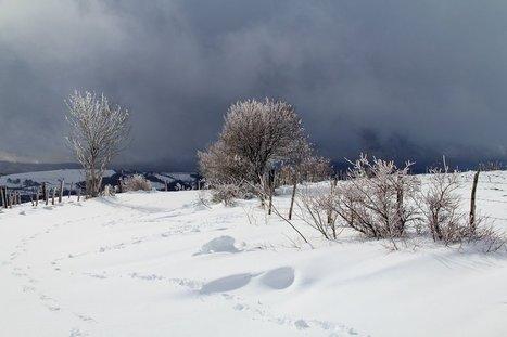 Paysage d'Aubrac sous la neige | L'info tourisme en Aveyron | Scoop.it