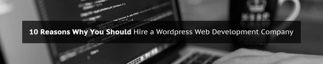 10 Reasons Why You Should Hire a WordPress Web Development Company | Wed Design | Scoop.it