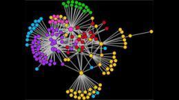 Neuro-tweets: #hashtagging the brain (by Medical Xpress) | Collective consciousness | Scoop.it