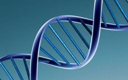 L'expression des gènes hérités du père serait plus forte | Santé & Médecine | Scoop.it