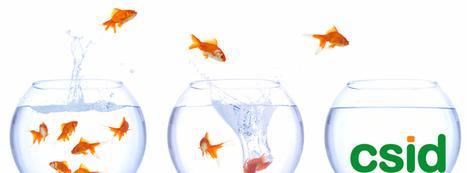 How can we do interdisciplinarity if disciplines dont exist? | Universitaires | Scoop.it