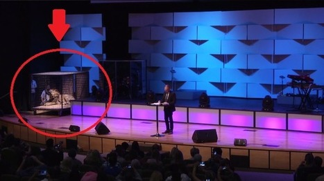 Lion Reportedly Used as Prop for Sermon | Nature Animals humankind | Scoop.it