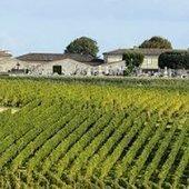 Le marché des vins de Bordeaux à la baisse après des années de progression | Autour du vin | Scoop.it