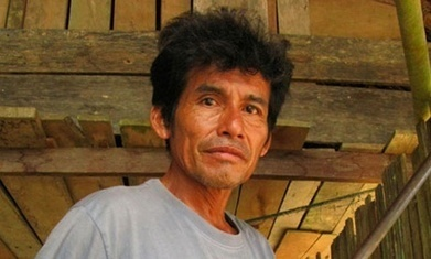Illegal loggers blamed for murder of Peru forest campaigner | Peruvian Amazon | Scoop.it