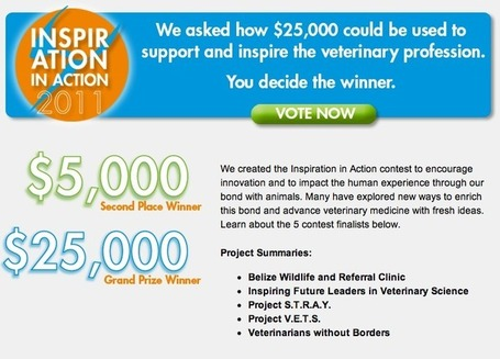 Belize Wildlife and Referral Clinic finalist | Belize in Social Media | Scoop.it