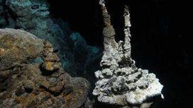 Microbe is relative of complex life | mikrobiologija | Scoop.it