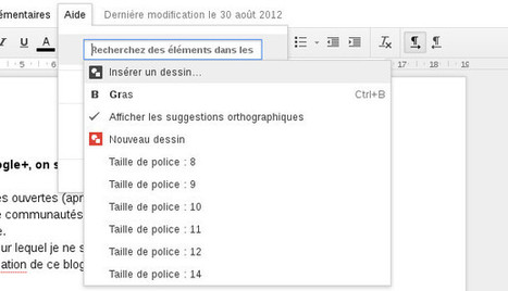 7 fonctions méconnues mais indispensables de Google Docs | l'enseignement d'économie gestion | Scoop.it